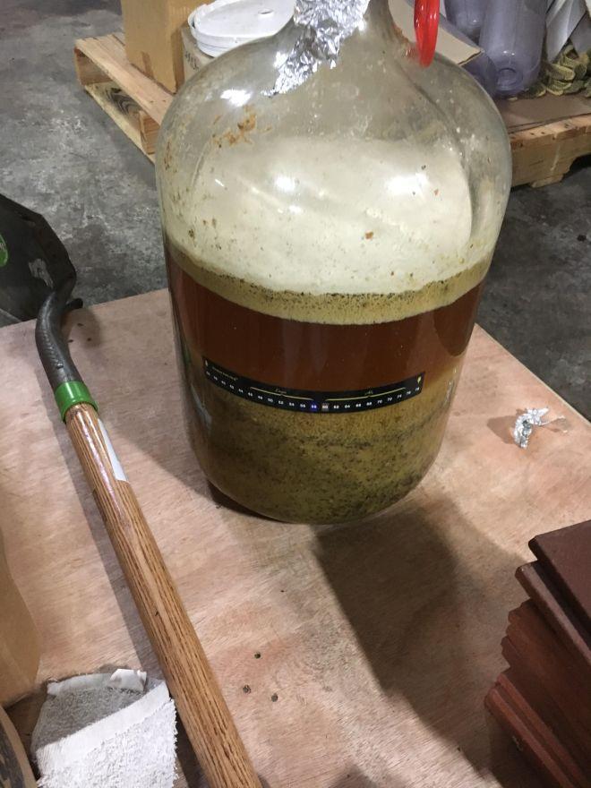 hermitage fermented kiwi